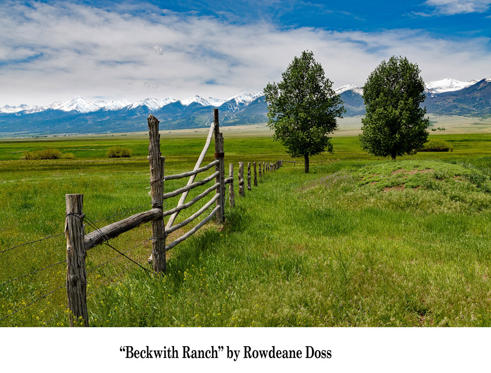 Grand-Prize-Winner---View-from-Beckwith-Ranch-by-Rowedean-Doss