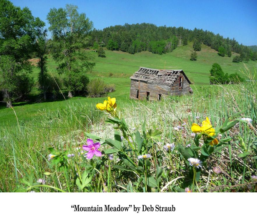 Spring-Photo-Finalist----Mountain-Meadow-by-Deb-Straub